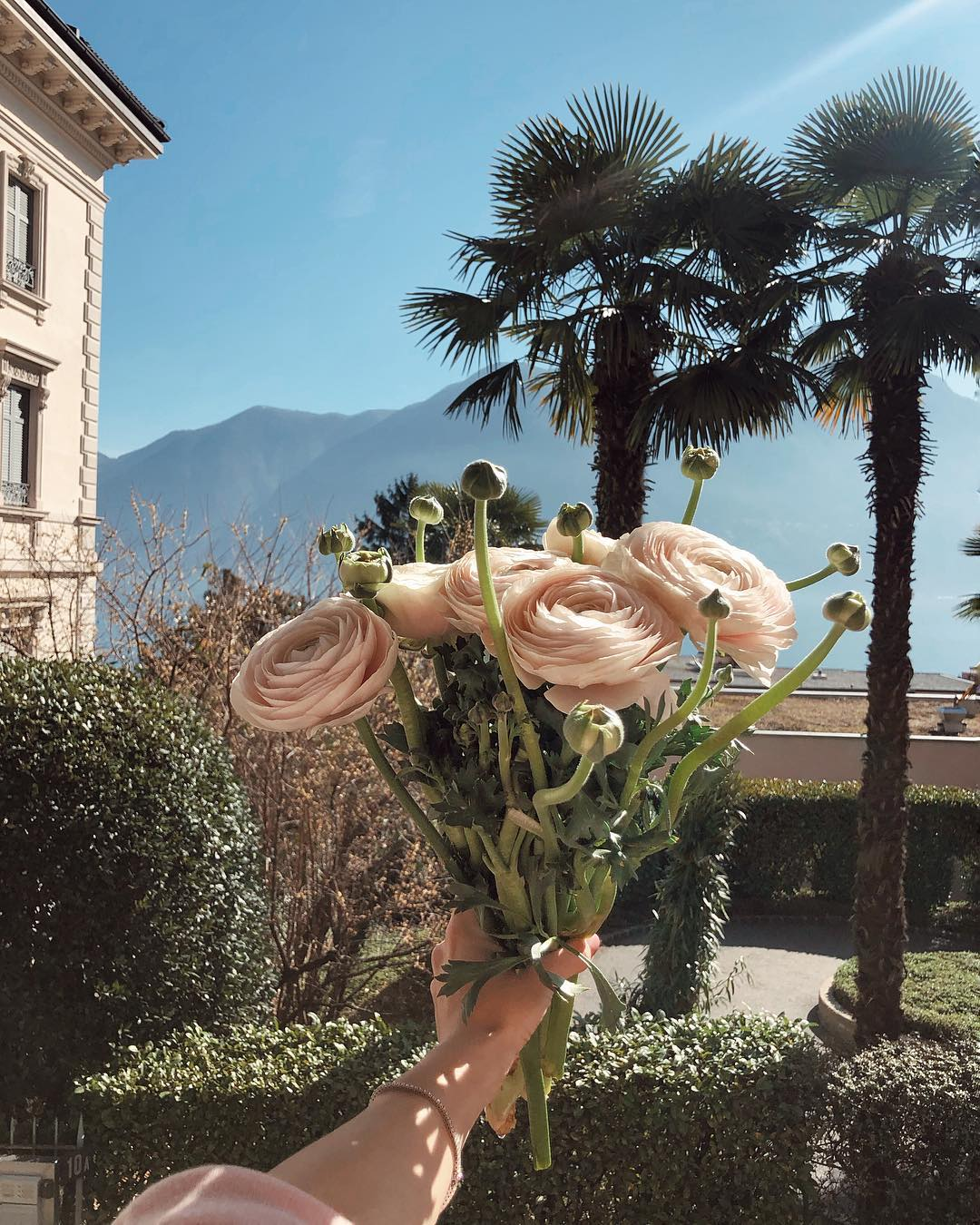 do you love flowers which are your favorite ones ⁣⁣ ⁣⁣ ⁣ amate i fiori io adoro questi ma